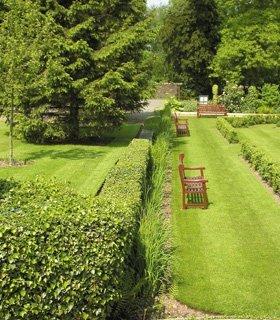 Wooden decking - Haywards Heath, West Sussex - A Martin Garden Services Ltd - Garden shed