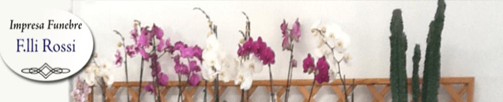 Impresa funebre Bibbiena