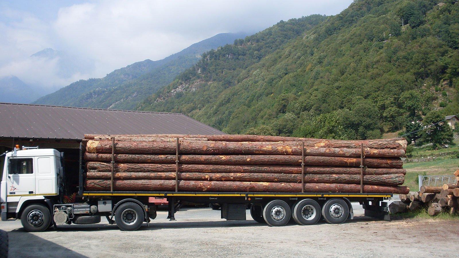 camion trasporta tronchi di legno