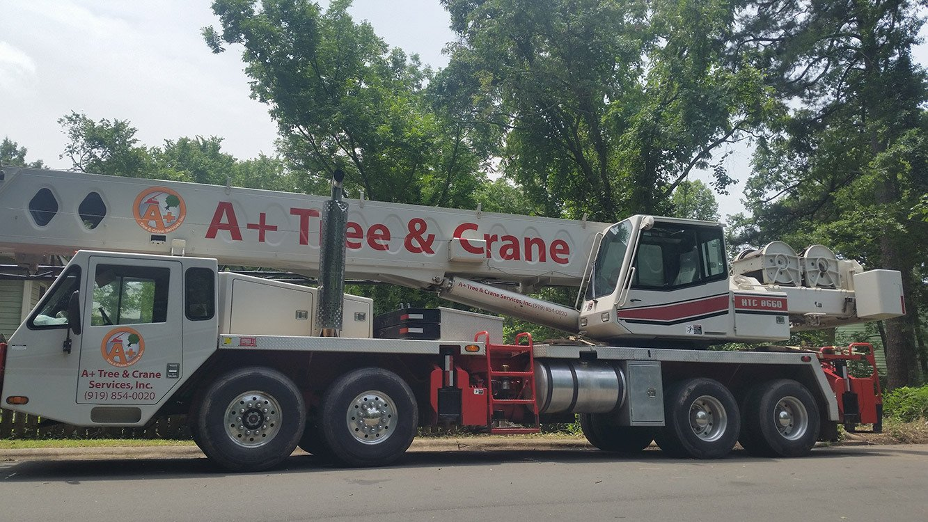 Raleigh Triangle Tree Crane Service