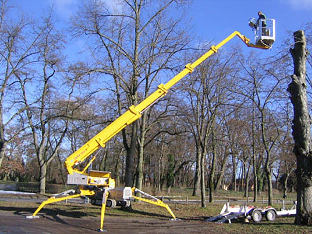 Tree Crane Service