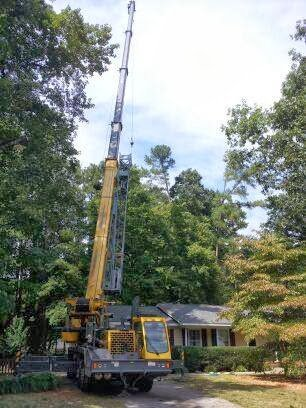 Durham Tree Removal & Trimming Services