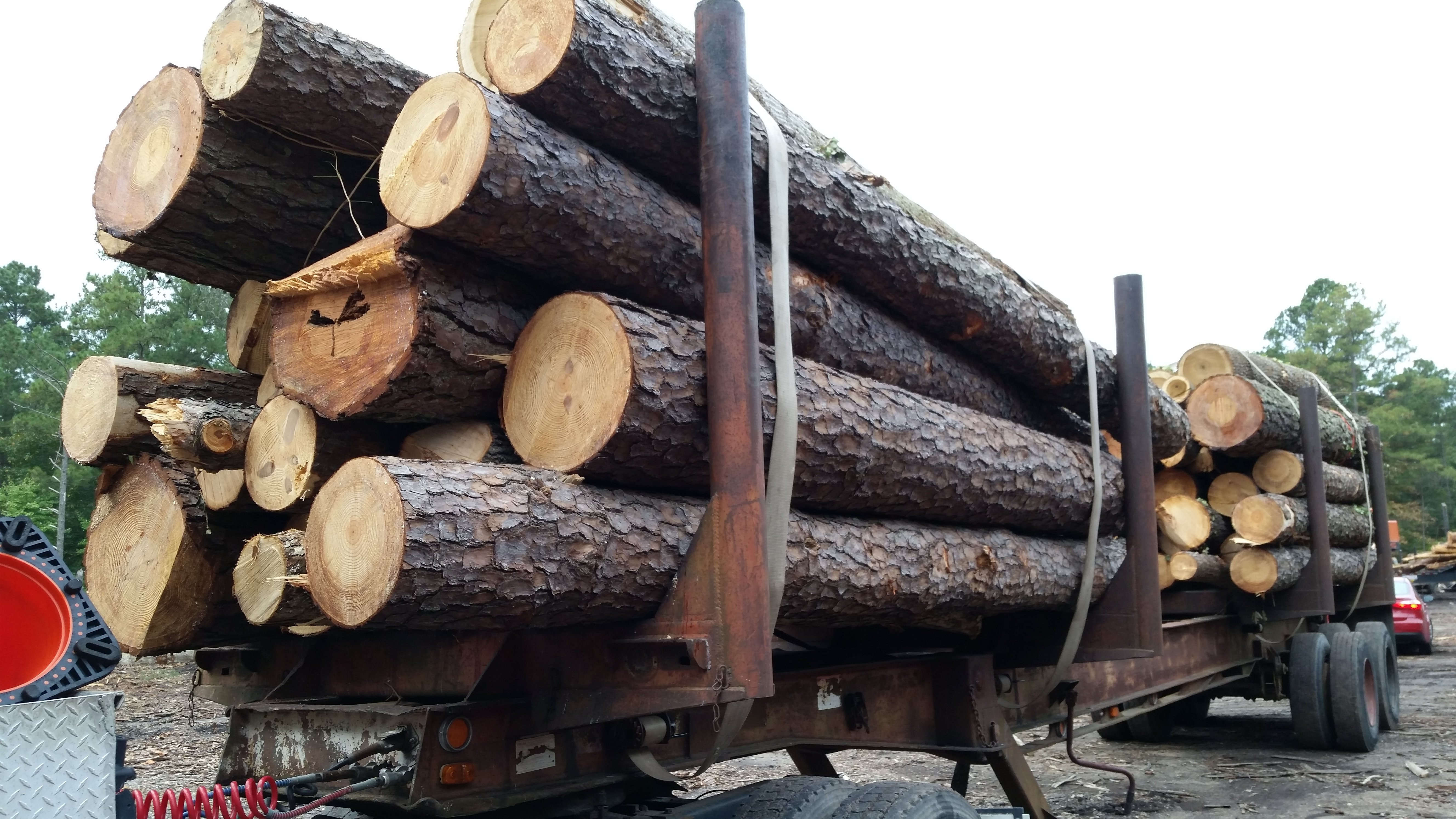 load & haul large quantity of wood
