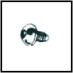 Fasteners - Security Bolt