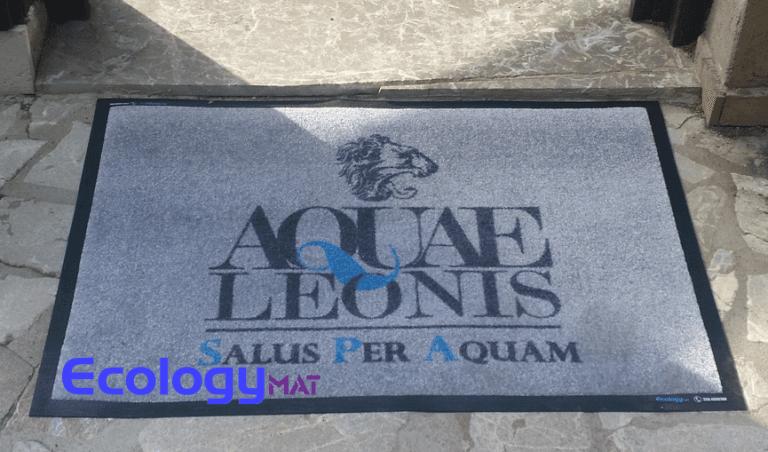 un tappeto con scritto aquae Leonis Salus per aquam