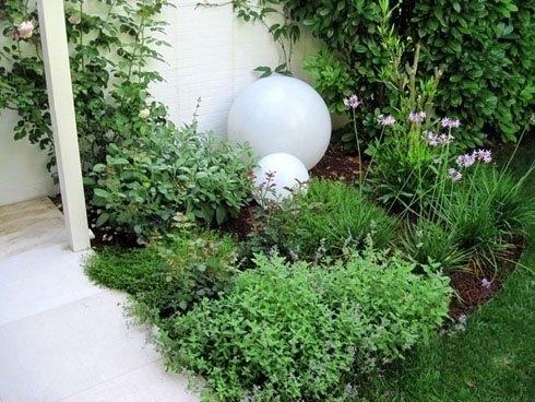 aiuola con diverse piante verdi e due sfere bianche
