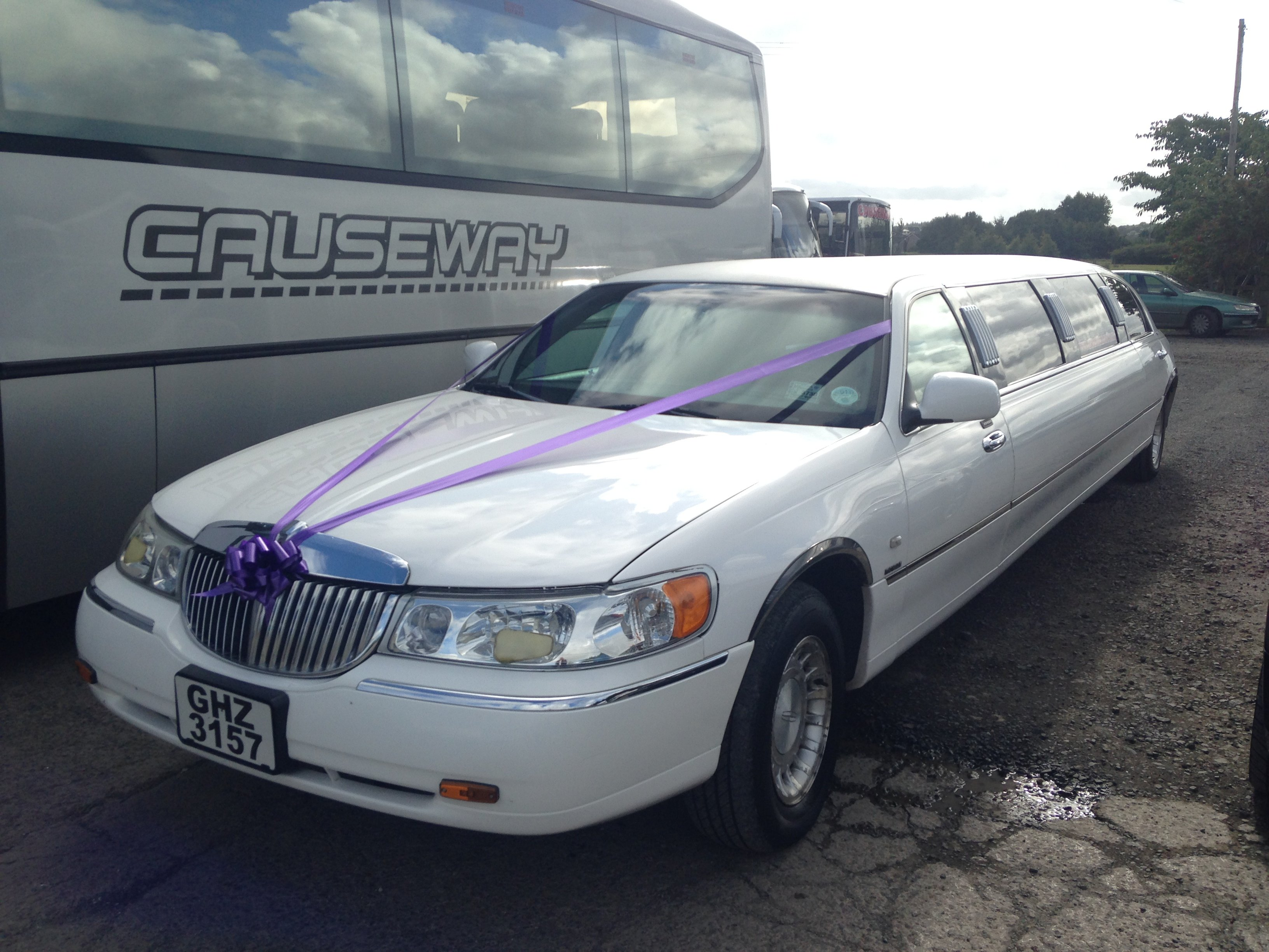 spacious limousine for hire