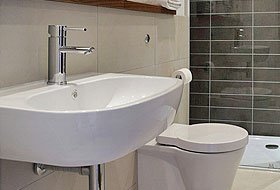 sink and toilet seat