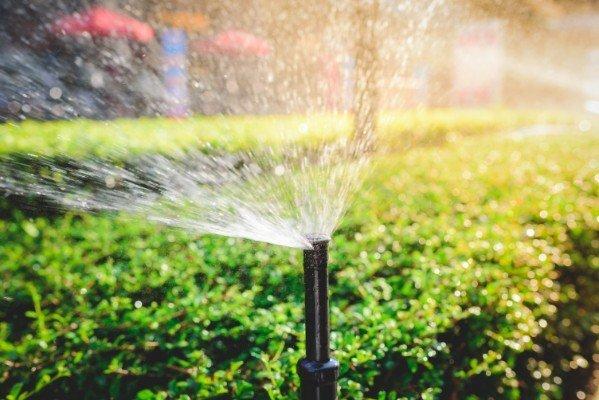 Sistema di irrigazione da giardino