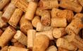 Forniture viticoltura