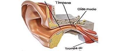 patologia menierica