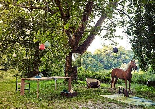 Cavallo nel prado