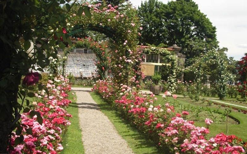 giardino del vivaio