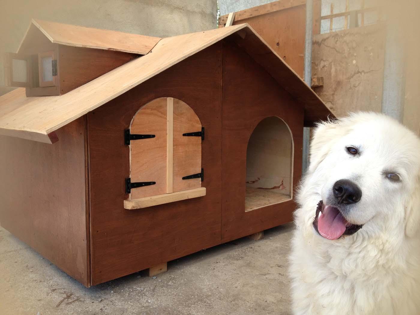 una cuccia per cani in legno con accanto un pastore maremmano