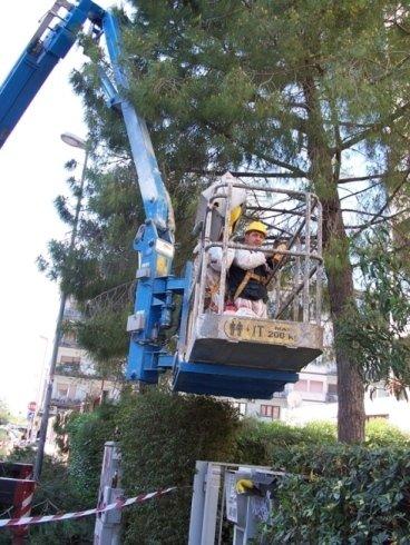 lavori in altezza, potatura alberi, pulizie con macchinari