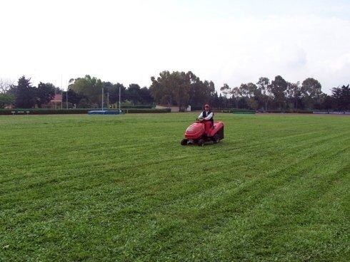 manutenzione prato, manutenzione aree verdi, taglio erba con mezzi