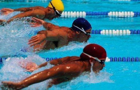 Corsi acquagym legnago legnago nuoto cosa facciamo for Piscina olimpia vignola telefono