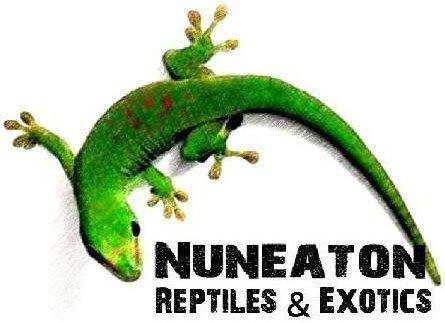 Nuneaton_Reptiles_Exotic_Company Logo