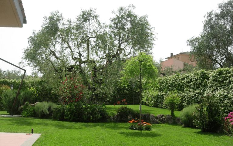 veduta di un giardino