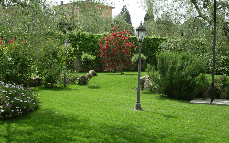 creazione di parchi