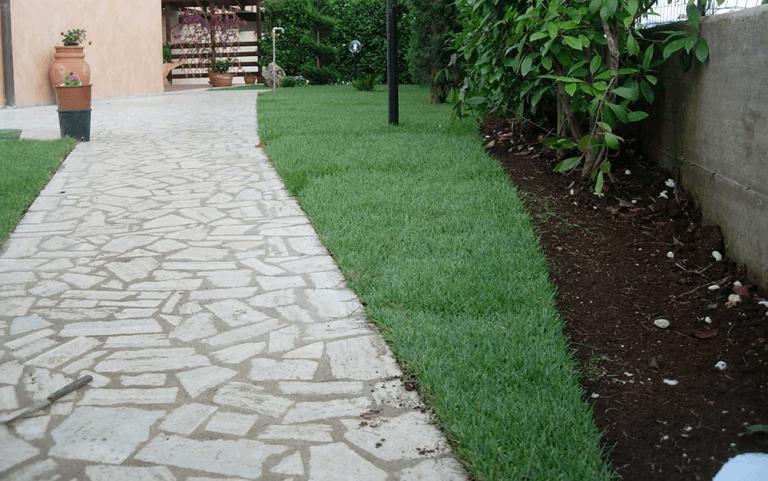 sentiero in mezzo a un giardino