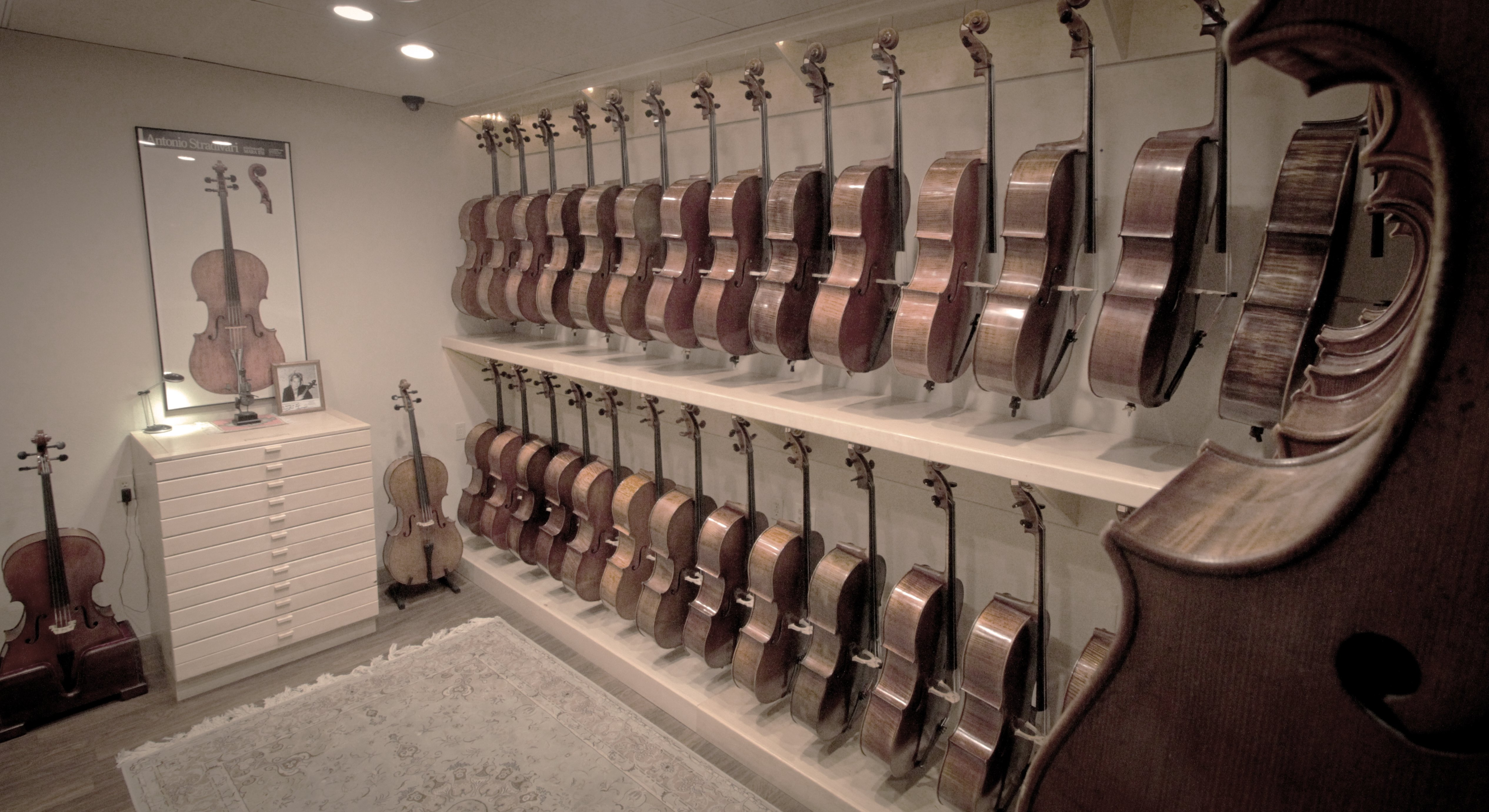 Violin Lessons San Antonio, TX