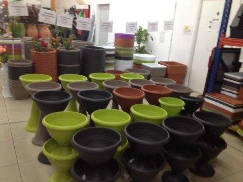 Fasi per fiori e piante