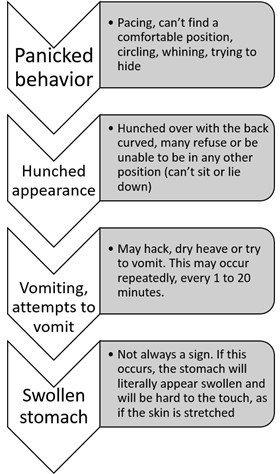 pug-dog-bloat-symptoms-chart-01