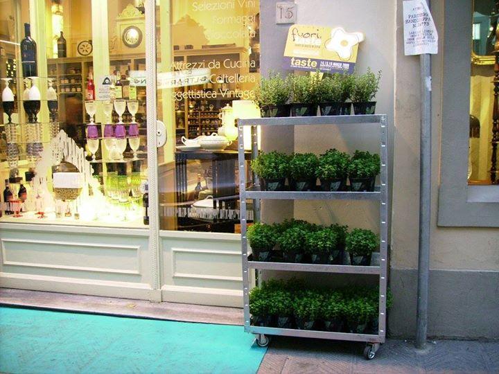 Vetrina di negozio con un scaffale con piante