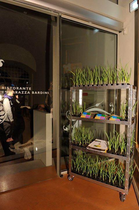 Scaffale in ferro con piante di fronte all'entrata di un ristorante
