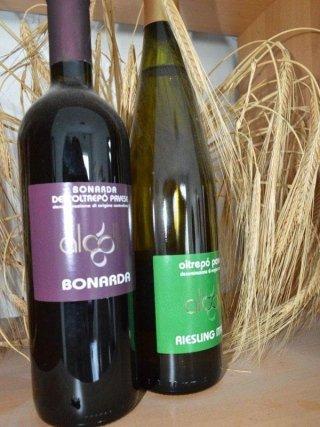 barbera riserva vino