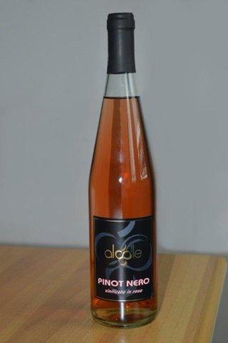 Pinot nero vinificato rosato