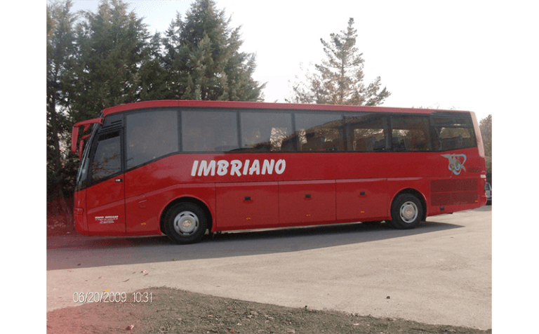 laterale bus palladio