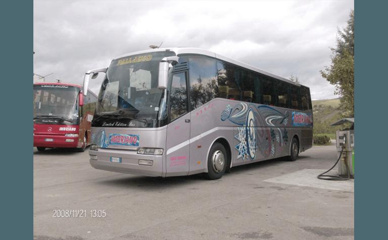 noleggio bus palladio grigio