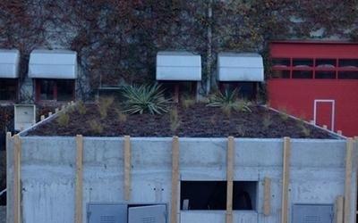 realizzazione tetti lecco