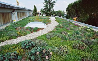 Giardino pensile abbadia lariana lecco co gi srl for Realizzazione giardini pensili