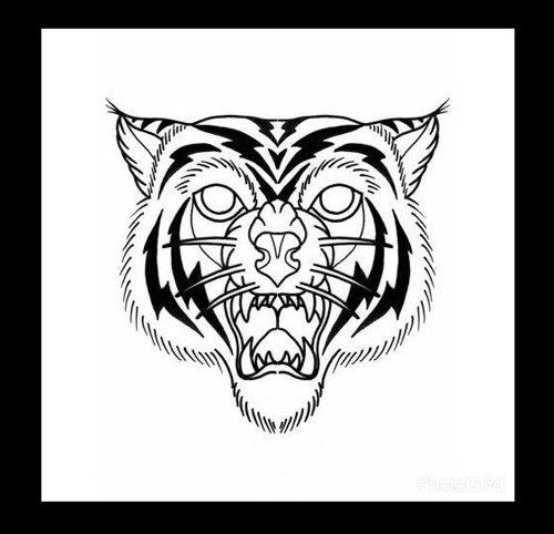 Disegno della faccia di una tigre