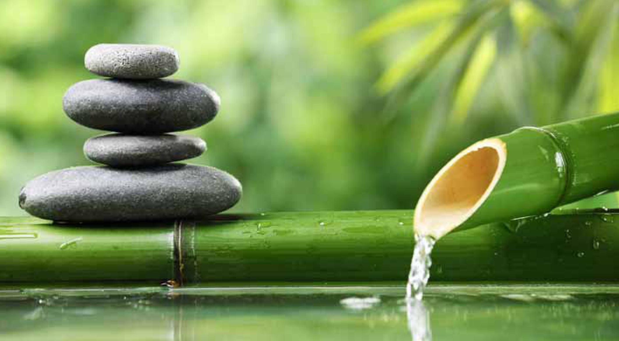 vista di pietra e bambù con aqua