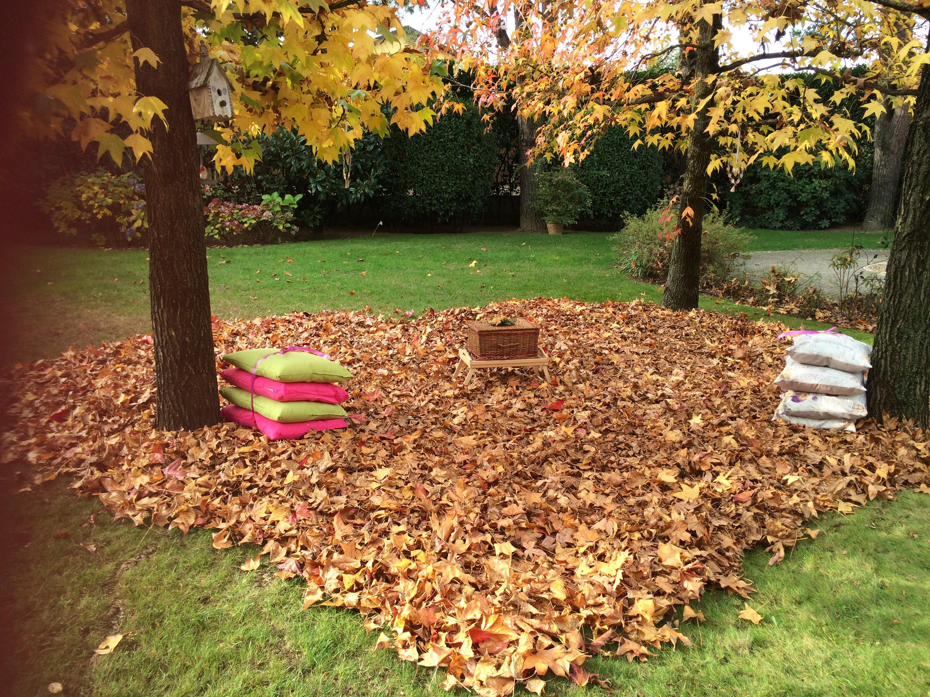 Spazio esterno per il riposo con le foglie