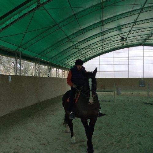 fantino sul cavallo