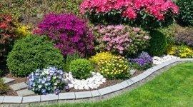 sopralluoghi, manutenzioni giardini privati, personale altamente qualificato