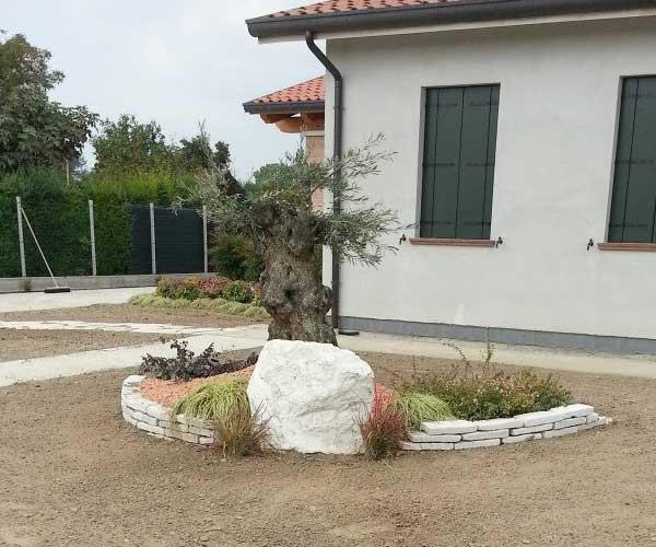 aiuola con un grande sasso, delle piante, un albero al centro e sulla destra una villa