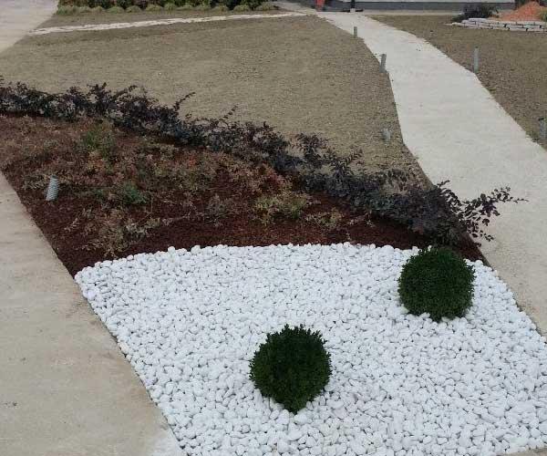 un'aiuola tricolore con sassi, cortecce e sabbia con delle piante