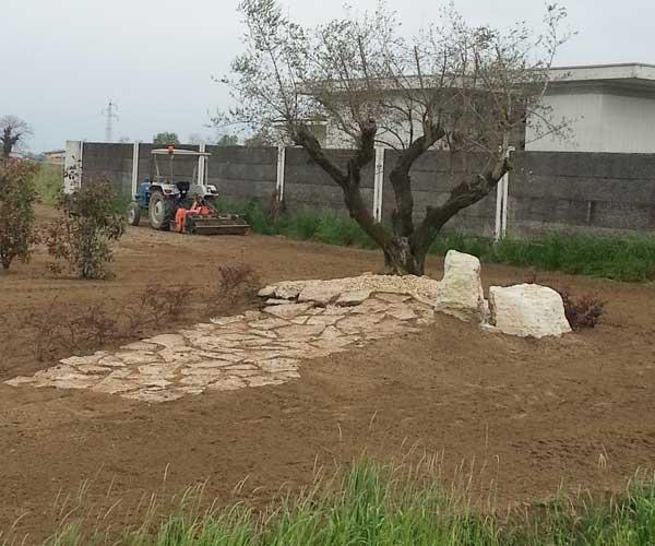 Un terreno una macchina agricola sul lato destro mentre sta arando