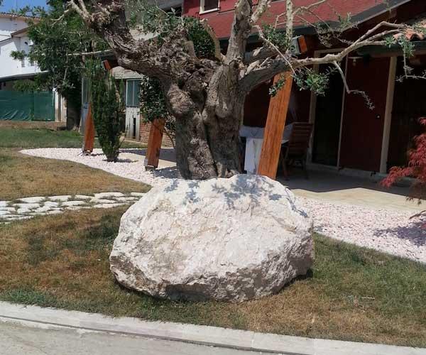 Un'aiuola con un albero senza foglie, un sasso grande di color bianco e vista di una tettoia sorretta da due colonne in legno
