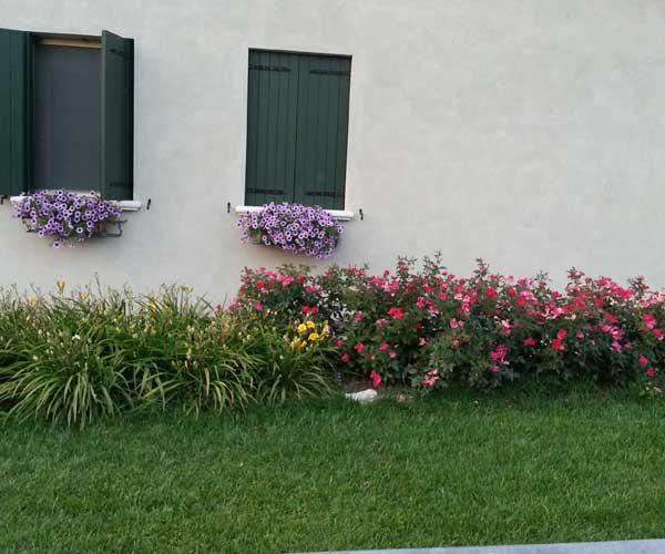 Vista di una villa con due finestre verdi con vasi di fiori di color viola, prato intorno la villa e altre piante fiorite