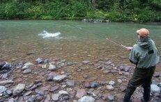 tour pesca al salmone in british columbia