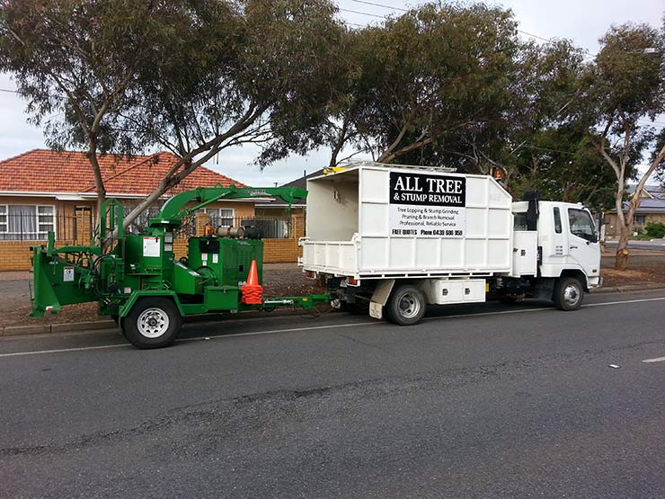 all tree and stump removal mini excavator near truck