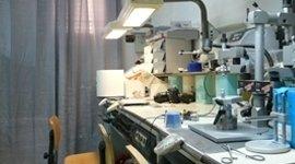 sala protesi fissa