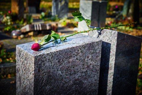 rosa su una tomba